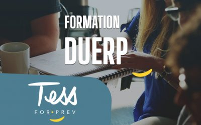 Formation DUERP